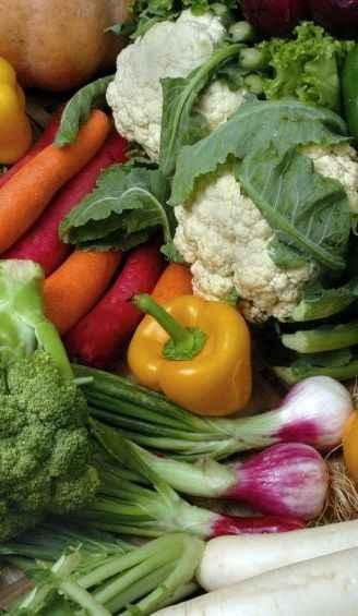 fructoseintoleranz Gemüse